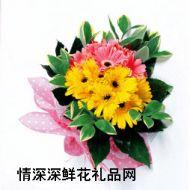 韩国,非洲菊组合花束