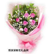 三八��r花,柔情似水(三八�特�r)