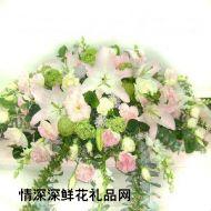 桔梗花,温馨贺愿