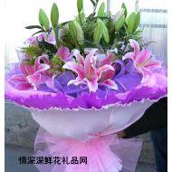精品鲜花,粉香水百合