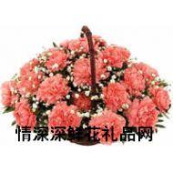 春节鲜花,无尽的祝福