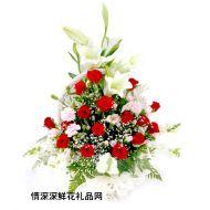 祝福鲜花,最真切的祝福