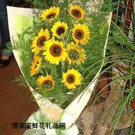 向日葵,感恩的心