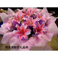 深圳鲜花,你是我的最爱