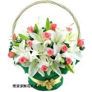 母亲节鲜花,很爱很爱你