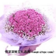 求婚鲜花,紫爱你