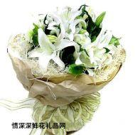 重庆鲜花,长相依