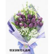 精品鲜花,浪漫紫色