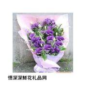 桔梗花,紫色情��