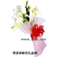 祝福鲜花,心意