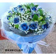 爱情鲜花,美丽的思念