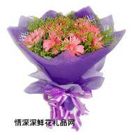 祝福鲜花,粉色的梦幻
