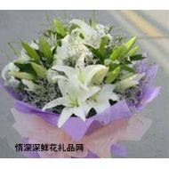 商务鲜花,美丽可人