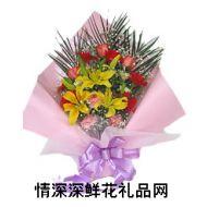 太阳菊,永远健康