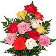 加拿大,12枝各色玫瑰