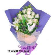 爱情鲜花,冰清浪漫