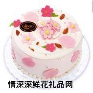 鲜奶蛋糕,樱花飞舞