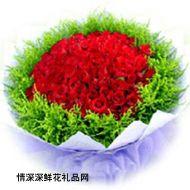 大连鲜花,天长地久99枝(情人节鲜花)