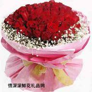 深圳鲜花,天长地久(99)