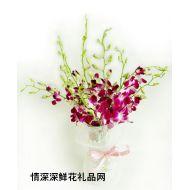 父亲节鲜花,父亲之花