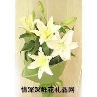 中秋节鲜花,想念亲人