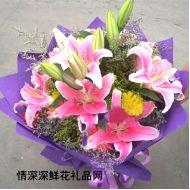 祝福鲜花,缤纷心情