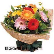 母亲节鲜花,朝阳