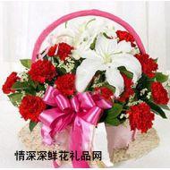 教师节鲜花,教师节 谢师恩