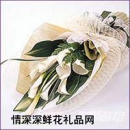 广州鲜花,情意绵绵