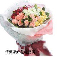 夫妻鲜花,玫瑰花园