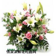 祝福鲜花,心意坊