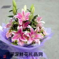 广州鲜花,粉霞满天