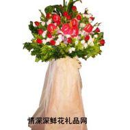 香港鲜花,开业花篮
