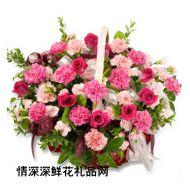 春节鲜花,浓厚祝福